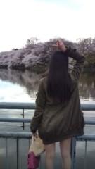 佐々木悠花 公式ブログ/写真館:とりあえず桜 画像2