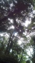 佐々木悠花 公式ブログ/癒やしも一つで台無しに。 画像1
