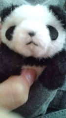 佐々木悠花 公式ブログ/突撃!パンダがゆく。 画像1