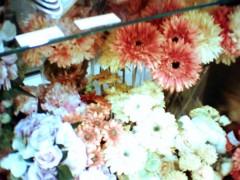 佐々木悠花 公式ブログ/久々の秋葉原☆ 画像1