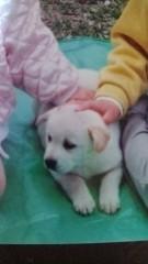 佐々木悠花 公式ブログ/明日のお知らせ☆ 画像1