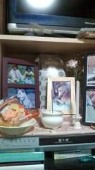 佐々木悠花 公式ブログ/お供え 画像1