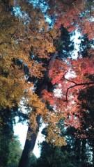 佐々木悠花 公式ブログ/12月ですょ。師走ですってば。 画像3