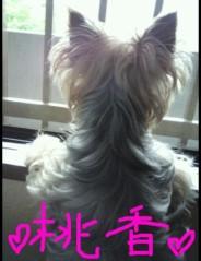 野呂佳代 公式ブログ/私の待ち受け 画像1