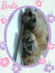 野呂佳代 公式ブログ/たまらんですっ!! 画像3