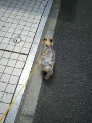 野呂佳代 公式ブログ/あ 画像1