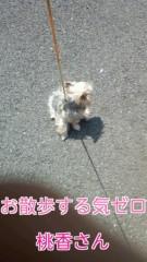 野呂佳代 公式ブログ/もんもんちゃん 画像1