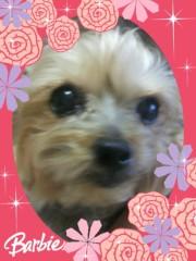 野呂佳代 公式ブログ/たまらんですっ!! 画像2
