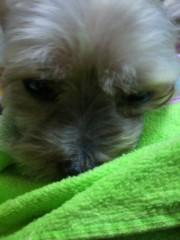 野呂佳代 公式ブログ/おやすみ 画像2
