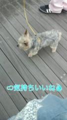 野呂佳代 公式ブログ/ドライブ 画像3