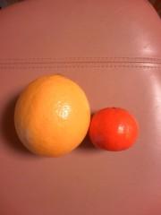 にゃんこ 公式ブログ/おはレモン 画像1