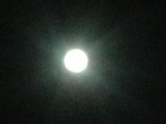 にゃんこ 公式ブログ/月光浴で浄化するにゃ。 画像2