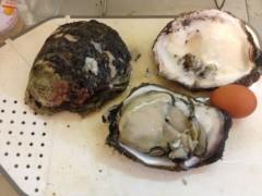 にゃんこ 公式ブログ/岩牡蠣もらいました 画像2