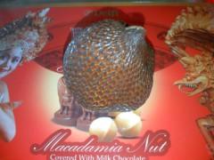 にゃんこ 公式ブログ/アルマジロのような果物、サラック 画像1