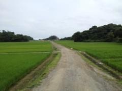にゃんこ 公式ブログ/癒しの島 浦戸諸島 画像3