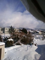にゃんこ 公式ブログ/雪国から、おはよー 画像1