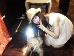 にゃんこ 公式ブログ/聴導犬欲しいにゃ。 画像1