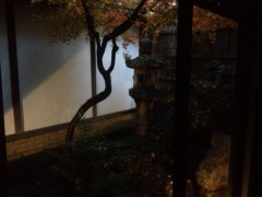 にゃんこ 公式ブログ/nyanko VS 幽霊 ? それとも・・・ 画像1