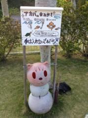 にゃんこ 公式ブログ/ネコセンターと水族館 画像2