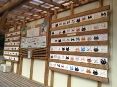 にゃんこ 公式ブログ/ネコセンターと水族館 画像1