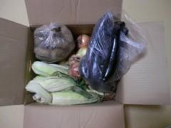 にゃんこ 公式ブログ/お野菜届きました〜ありがとう〜 画像1