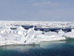 にゃんこ 公式ブログ/流氷シーカヤック&ウォーク体験記 画像2