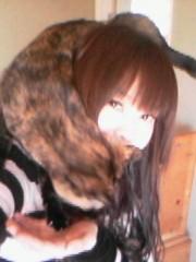 にゃんこ 公式ブログ/あったか猫マフラー 画像2