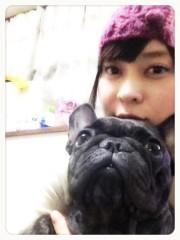 にゃんこ 公式ブログ/今日のわんこ 画像1