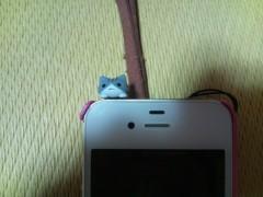 にゃんこ 公式ブログ/イヤフォンジャックの 画像1