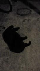 石井智也 公式ブログ/黒 画像1
