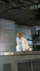 石井智也 公式ブログ/あくまでも演技力向上の為に。 画像1