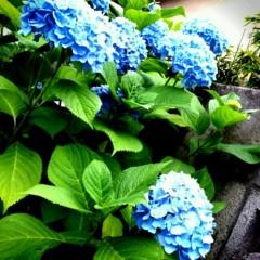 石井智也 公式ブログ/空梅雨 画像1