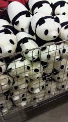 石井智也 公式ブログ/パンダ 画像1