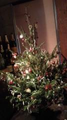 石井智也 公式ブログ/クリスマスツリー 画像3
