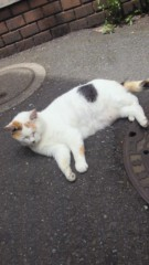 石井智也 公式ブログ/のびる 画像2