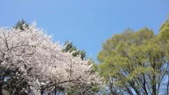石井智也 公式ブログ/ピンクグリーンブルー 画像1