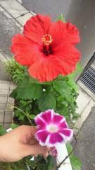 石井智也 公式ブログ/目の検査 画像1