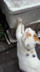 石井智也 公式ブログ/磨きを掛ける 画像1