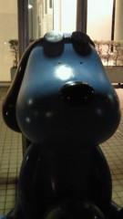 石井智也 公式ブログ/青い犬いた 画像1