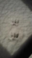 石井智也 公式ブログ/雪 画像1