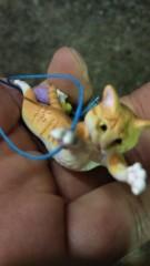 石井智也 公式ブログ/飛ぶ猫 画像2
