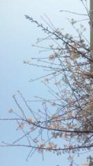 黒河奈美 公式ブログ/お久しぶり更新 画像1
