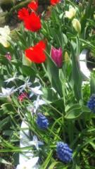 黒河奈美 公式ブログ/花咲く季節に 画像1