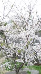 黒河奈美 公式ブログ/4月です 画像1