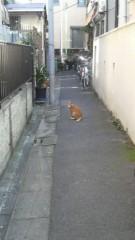 岩見理奈 公式ブログ/★稽古場最終日☆ 画像3