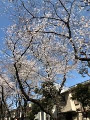 keiko(Vanilla Mood) 公式ブログ/お花見♪ 画像2