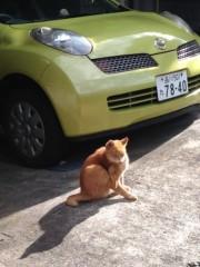 keiko(Vanilla Mood) 公式ブログ/○○との遭遇♪ 画像1