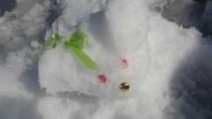 keiko(Vanilla Mood) 公式ブログ/大嵜家の雪だるま! 画像3