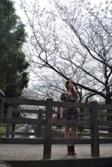 keiko(Vanilla Mood) 公式ブログ/お花見☆photo session 画像1