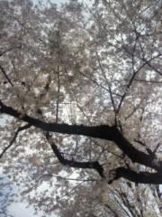 笹川亜矢奈 公式ブログ/選挙に行ってきました! 画像1